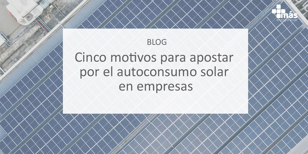 5 motivos para apostar por el autoconsumo solar en empresas